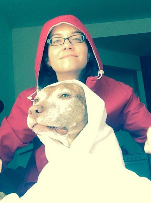 15-Year-Old Pit Bull Perfectly Poses To Recreate Iconic ...