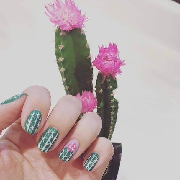 Succulents can be the New Trend in Nail Art