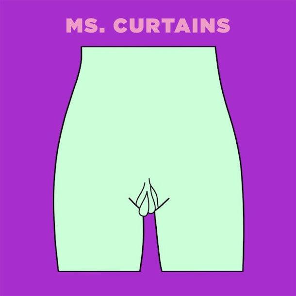 Ms Curtains vagina illustration