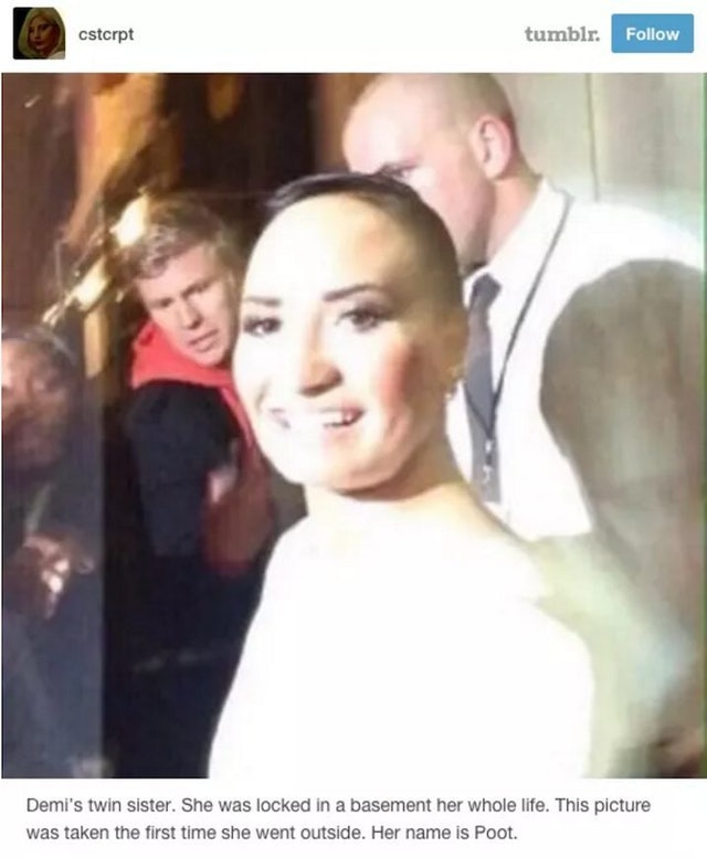 Demi Lovato Brought Poot Back To Twitter