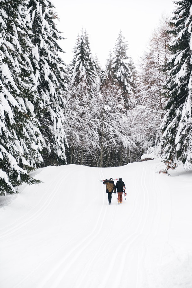 A couple walks with their skis on a snowy path that's lined with evergreen trees.