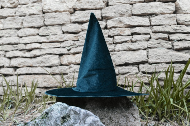 A witch's hat sits on a rock in a backyard.