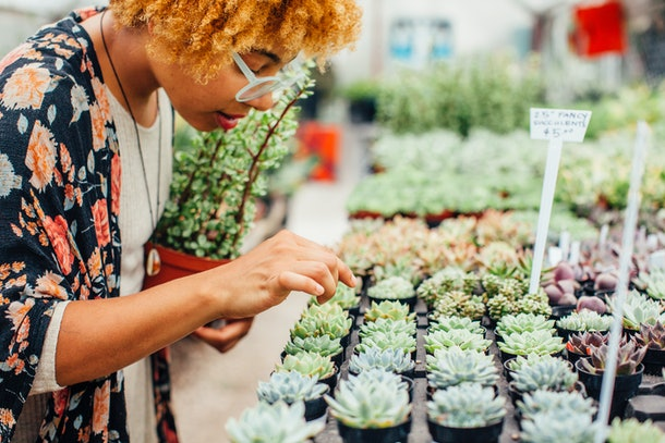 A young woman picks out a small succulent from a stand at the store.