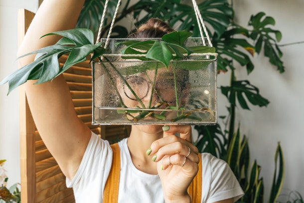 A woman holds up her plant in front of her face at home with her other plants behind her.