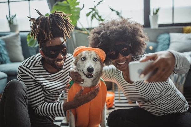 A couple in Halloween costumes take a selfie with their dog dressed as a pumpkin.