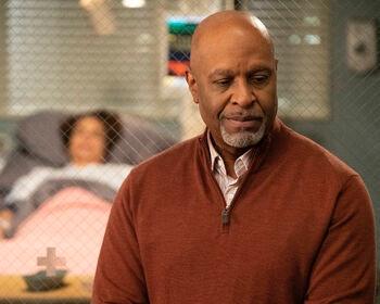 Richard Webber on Grey's Anatomy