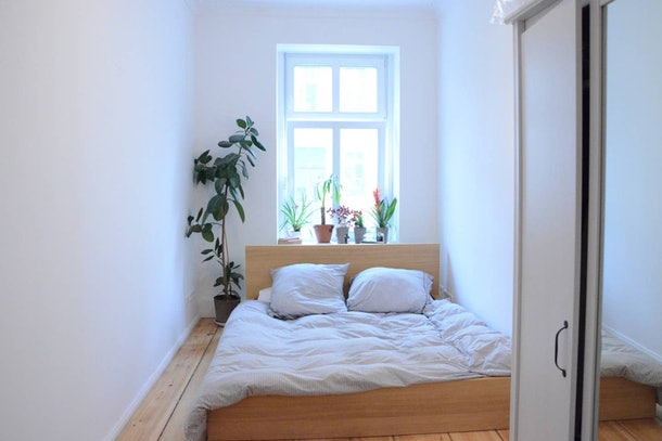 A well-lit private room in an apartment in Berlin on Airbnb lets you chill with cats and explore the city.