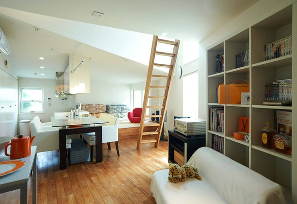 A modern apartment with cats is the perfect place to rent on Airbnb for a trip to Tokyo.