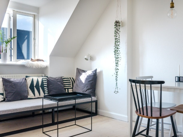 You can rent a Copenhagen home on Airbnb with a sociable cat, stylish kitchen, cozy living room, and more.