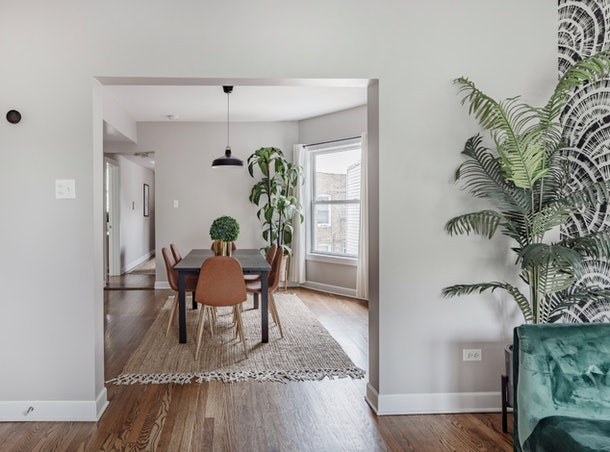 A doorway features a dining room with a black and brown dining set, with a giant fern to the right side of the wall.