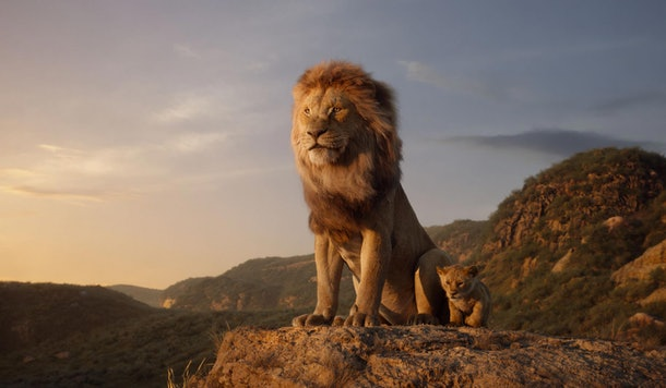 Mufasa in Disney's Live Action The Lion King