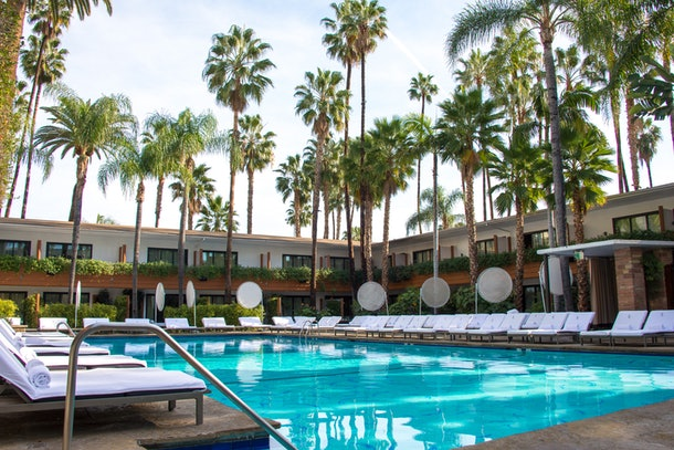 A blue hotel pool is surrounded by white chaises and towering California palm trees at The Hollywood Roosevelt.