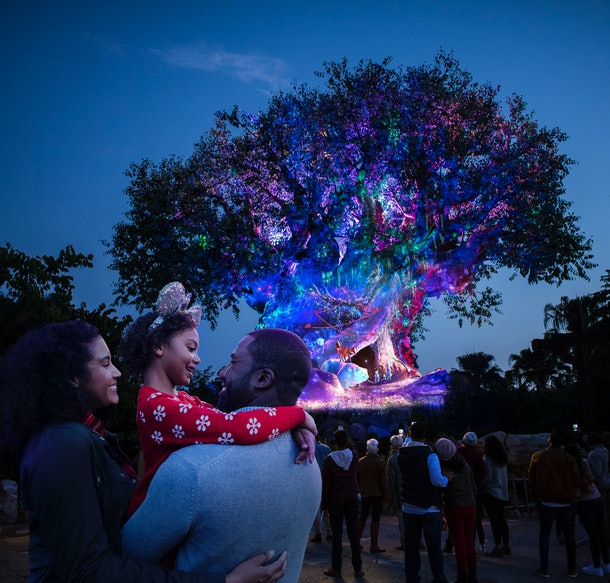 The Tree of Life at Disney's Animal Kingdom lights up for the holidays.