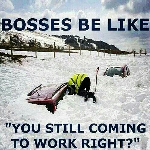10 Memes About Snow Work That Every Millennial Can Relate To