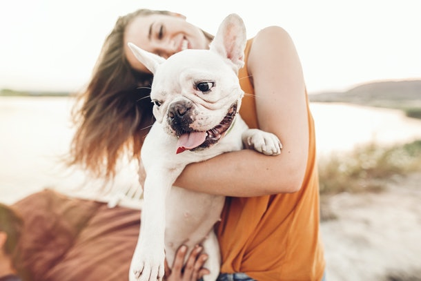 A happy woman holds her adorable puppy on the beach on a sunny day.