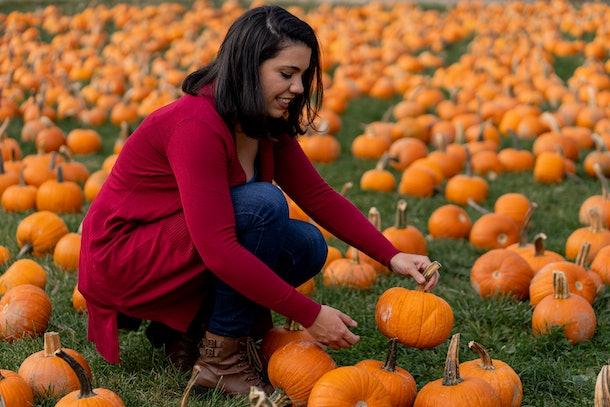 Young woman pumpkin picking