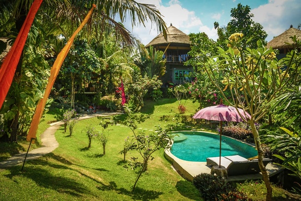 A treehouse in Bali has a beautiful pool and is surrounded by lush greenery.