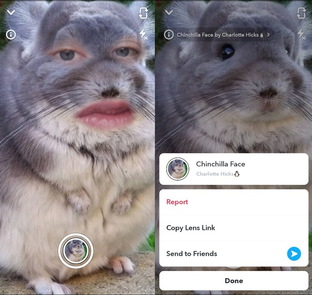 These are the best animal face filters on Snapchat to make your friends LOL.