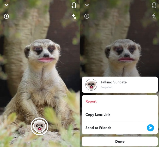 These are the best animal face filters on Snapchat right now.