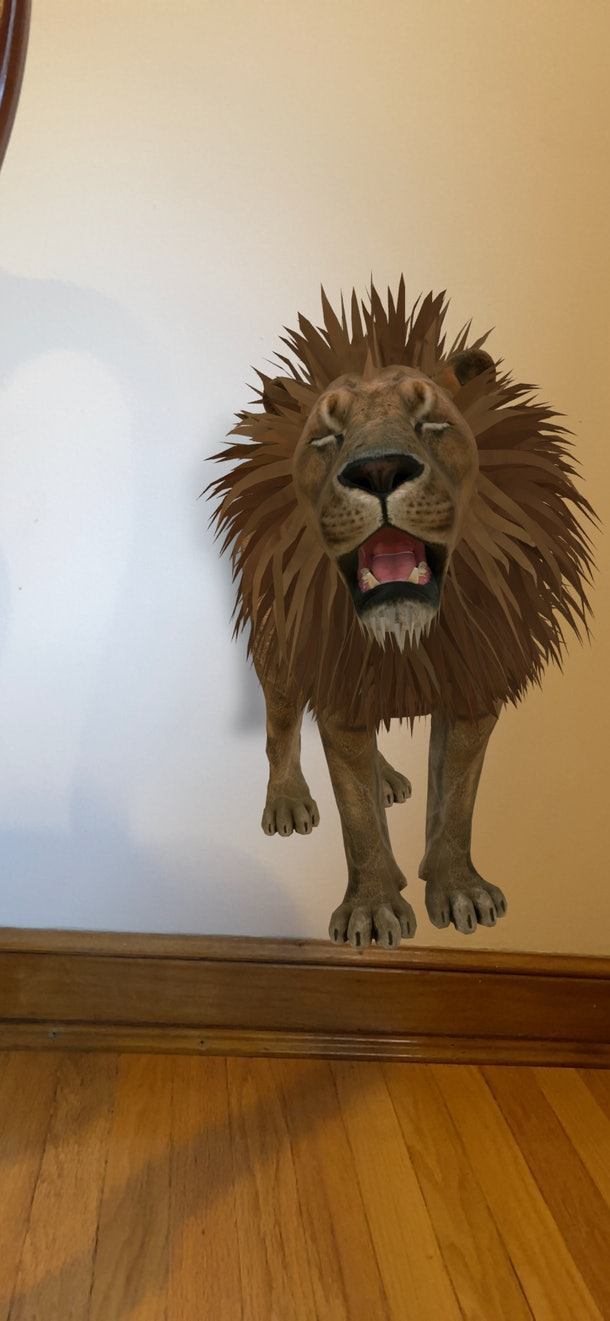 Google's 3-D animal feature puts virtual lions and tigers in your house.