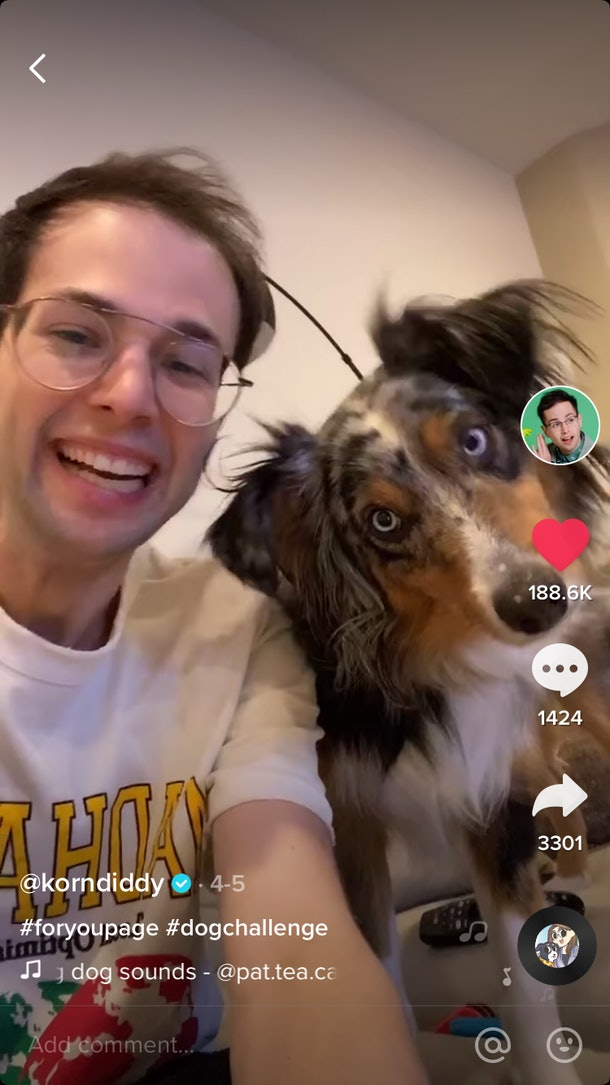 A happy man laughs as his dog react to a sound in a TikTok challenge.