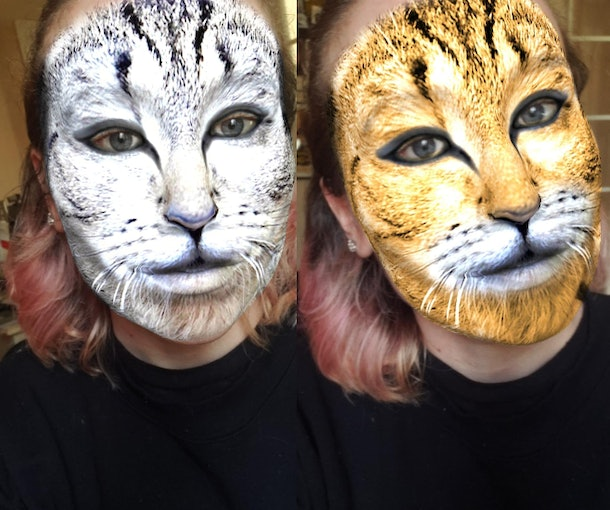 These best animal face filters on Instagram include cat face filters.