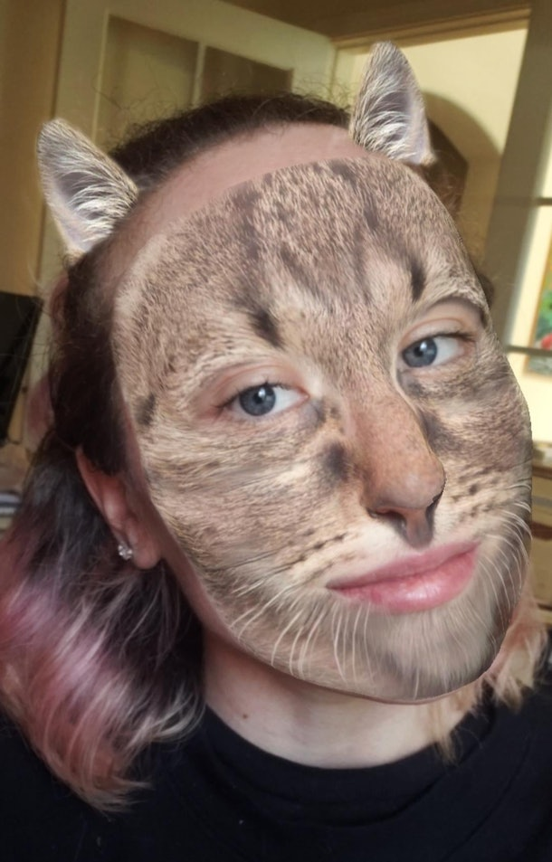 These best animal face filters on Instagram are so wild.