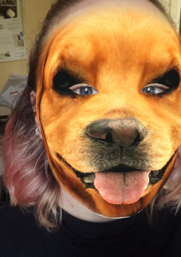 These are the best animal face filters on Instagram for a fun change of look.