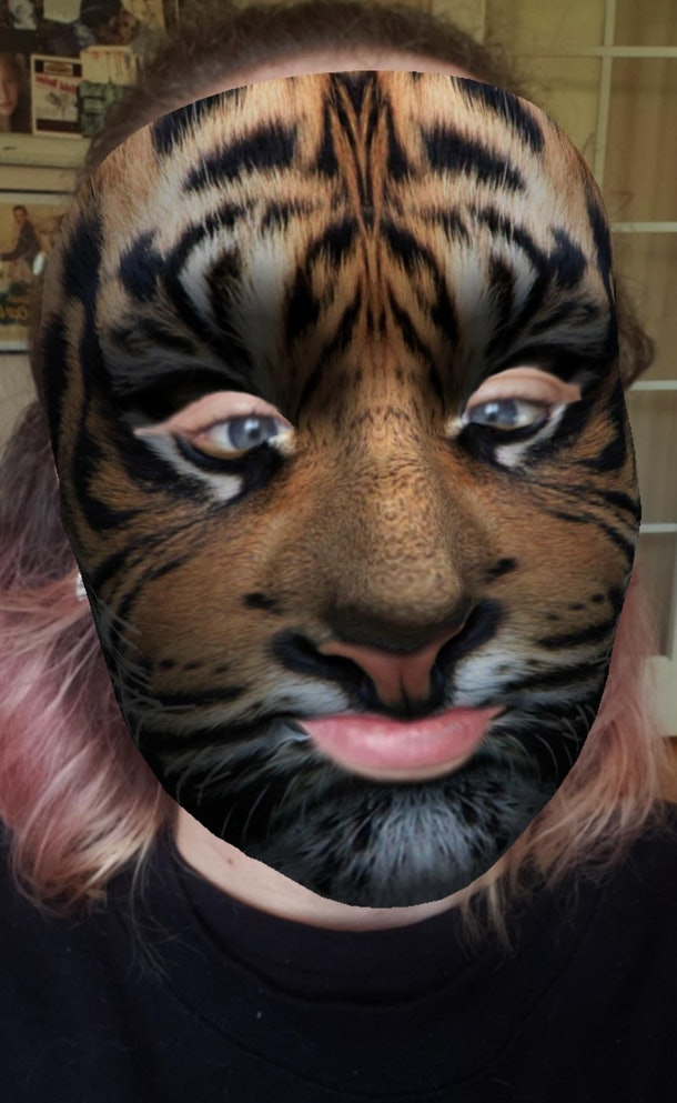 These best animal face filters on Instagram include a tiger face.