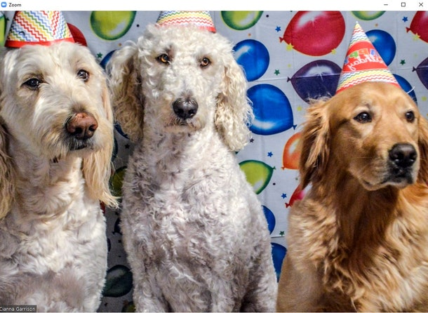 12 party backgrounds for Zoom that you can use to celebrate with your friends.