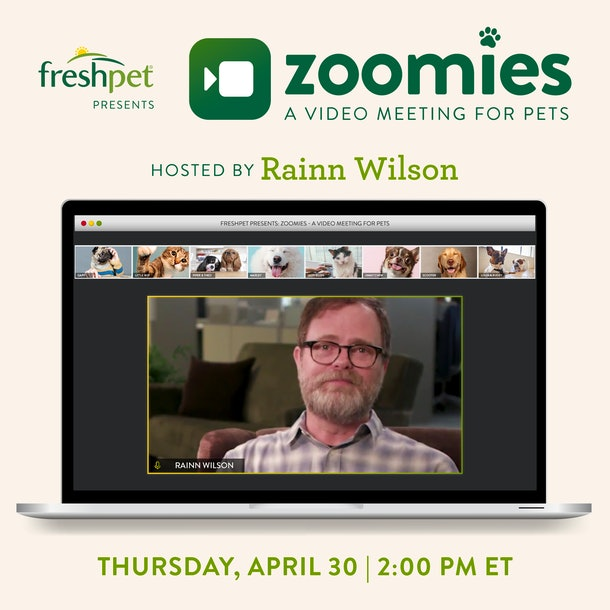 You can join Rainn Wilson on an all-pet Zoom meeting.