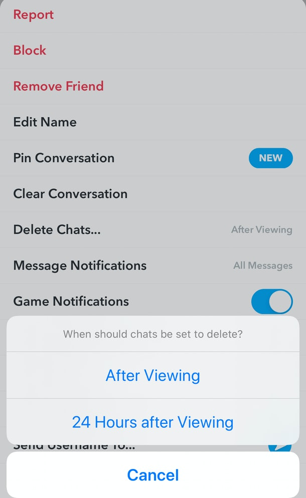 Here's how you can save your Chats in Snapchat.