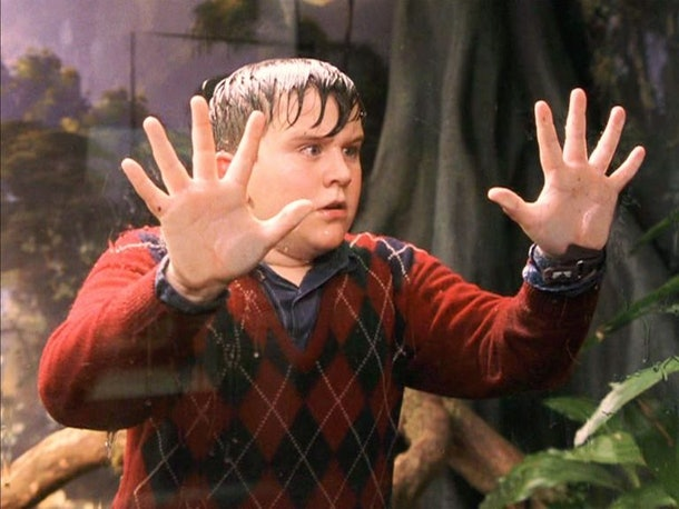 Dudley Dursley in 'Harry Potter'
