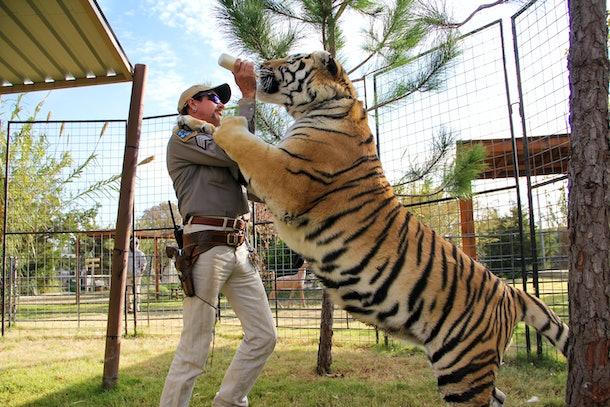 Joe Exotic and a tiger on 'Tiger King'
