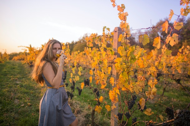 A young woman drinks a glass of wine at a vineyard in front of the vines at sunset.