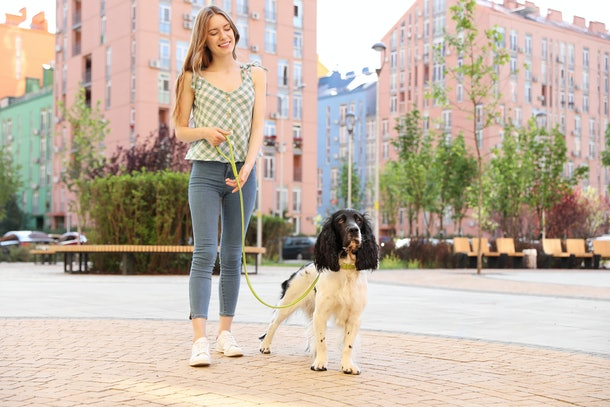 A woman walks her dog outdoors in the city.