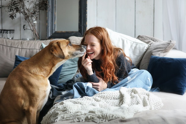 Beautiful redhead woman sitting on a sofa laughing and cuddling a dog