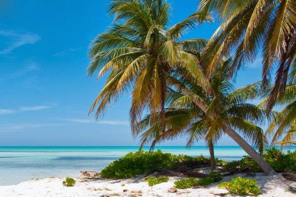 Dollar Flight Club's Jan. 16 Deals To The Cayman Islands will save you a lot of cash on your transportation.