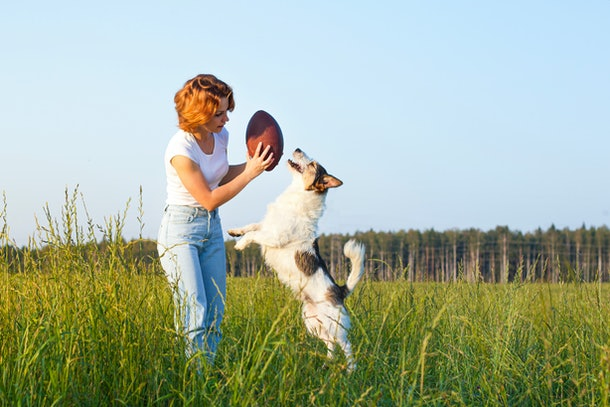 A young woman plays with her dog, who is jumping to reach a football.