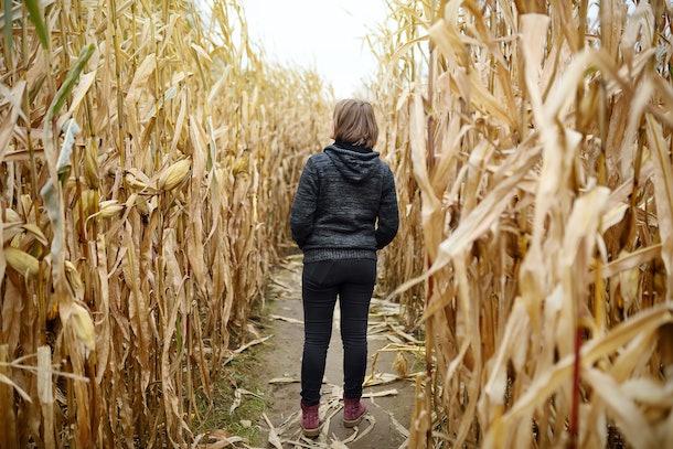 Young woman having fun on pumpkin fair at autumn. Person walking among the dried corn stalks in a corn maze. Traditional american amusement on pumpkin fair.