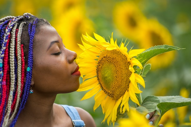Outdoor portrait of beautiful happy mixed race African American girl teenager female young woman  in a field of yellow flowers at sunset golden evening sunshine