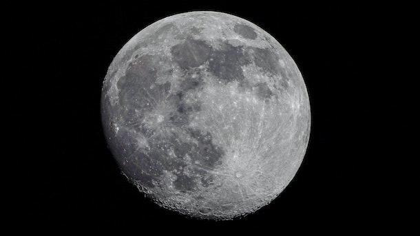 The Corona Moon From Olympia Washington